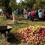 Ovocné dny na Klíčově