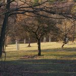 Podzimní vycházka do Motola