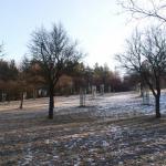 Podzimní vycházka spadaným listím sadů v Motole