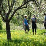 Přivítejte s námi jaro v pražských sadech
